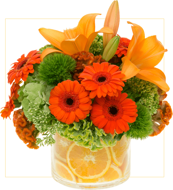 Floral Design Institute Home Welcome To Flower School