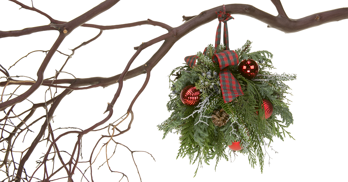 Floral Design Institute | Christmas Kissing Ball | Christmas Kissing ...